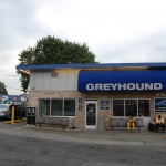 Greyhound Fenton & Sligo
