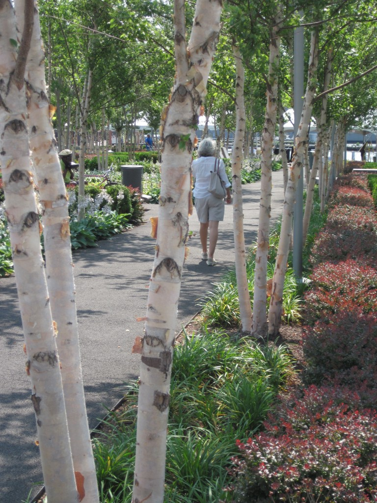 Yards Park along the Anacostia River--from concept to detail--is an utrban park