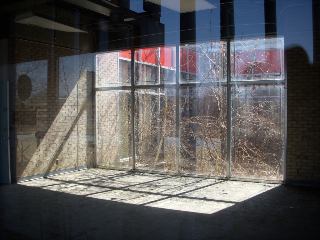 The front foyer is lit by a glass wall looking out to an interior courtyard.