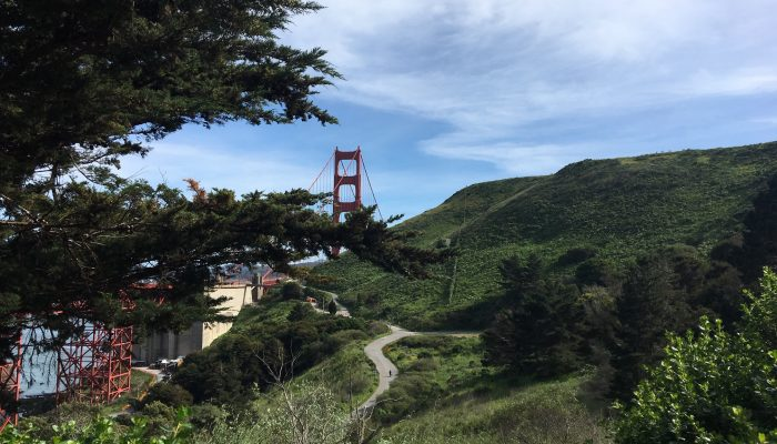 Top of Golden Gate Bridge seen behind hill and trees