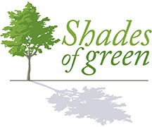 shades of green banner