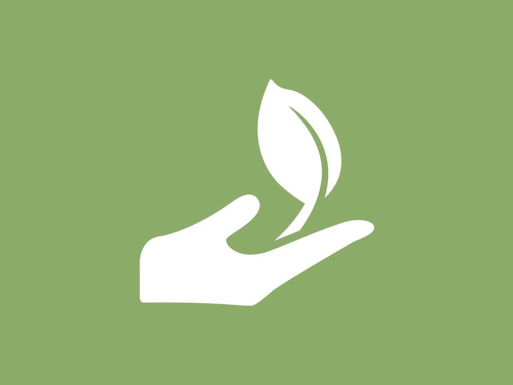 Forest Conservation Easements