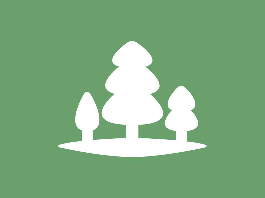 Tree Canopy Explorer