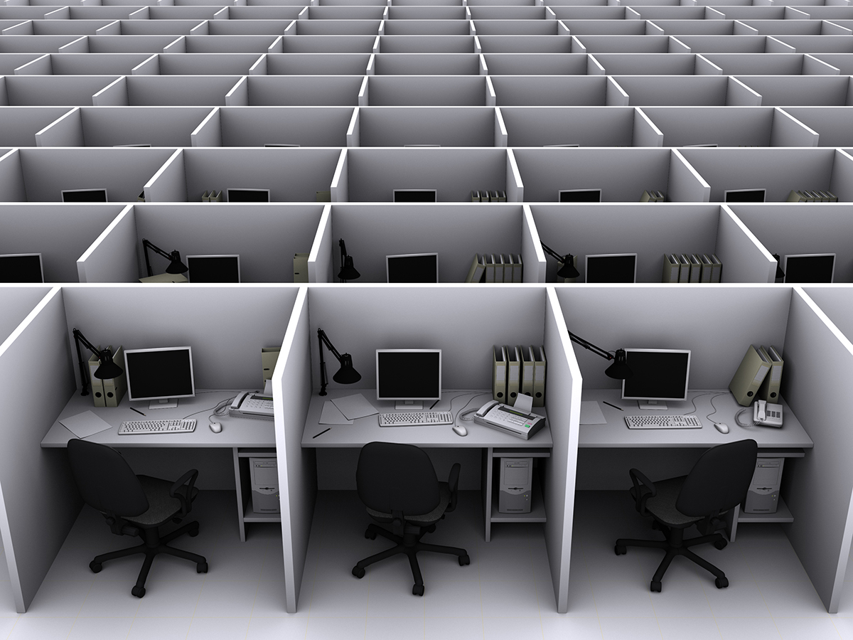 rows of cubicles with computers
