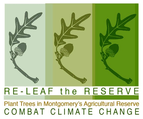 Re-leaf the Reserve logo