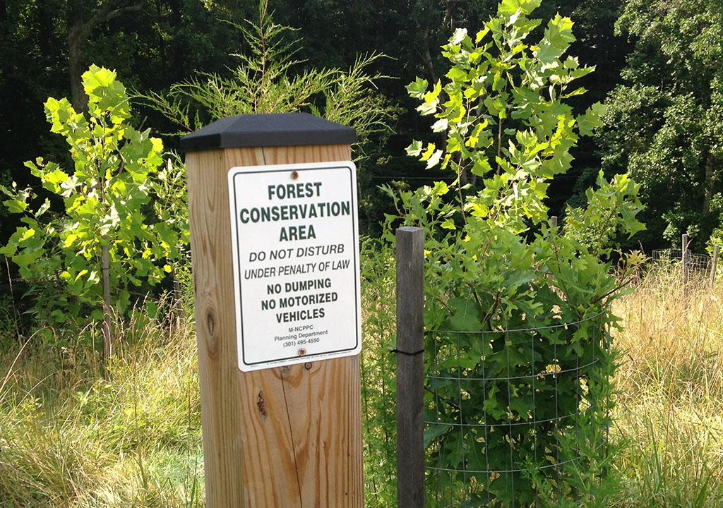 Forest Conservation Easement sign on post