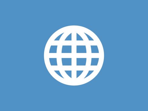 info-grid-globe icon
