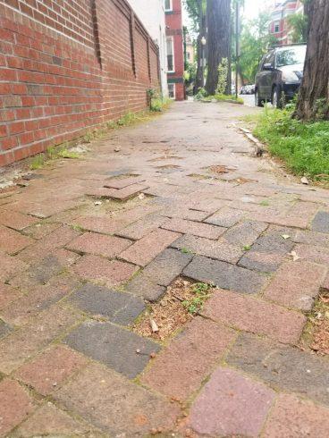 a sidewalk made up of uneven bricks