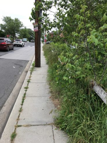 a point of view of a side walk with a wood pole in the middle of it